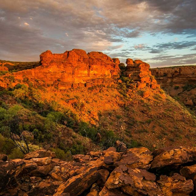 Gems of the Red Centre