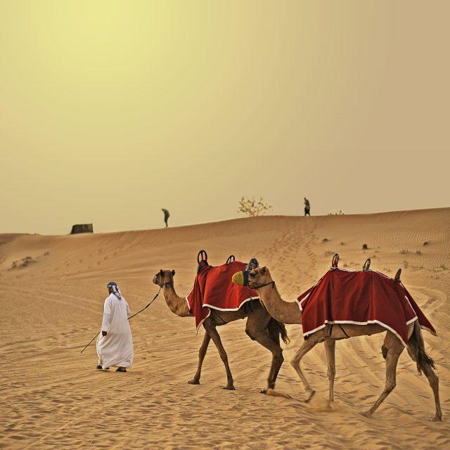 Arabian Nights to European Delights United Arab Emirates, from Dubai