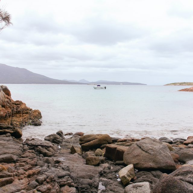 Best of Tasmania Cruise
