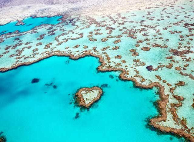 Great Barrier Reef & Kuranda