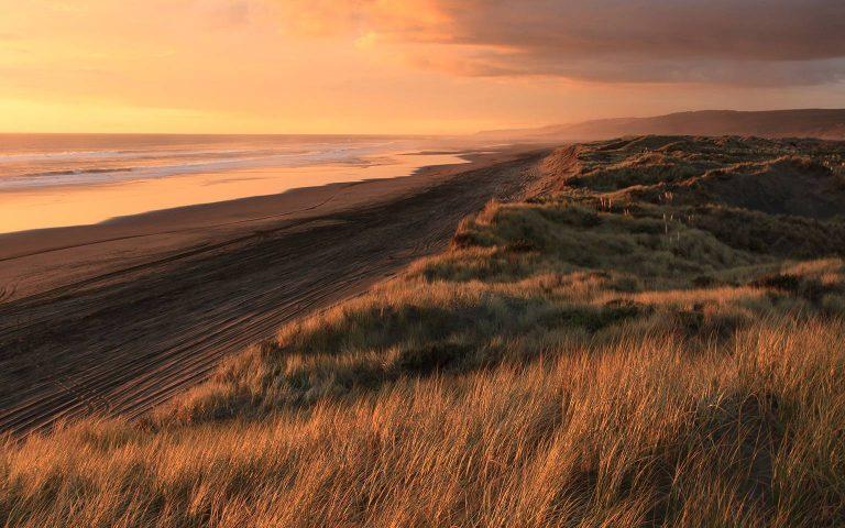 NZ-Auckland-beaches-2-petr-vysohlid-9fqwGqGLUxc-unsplash
