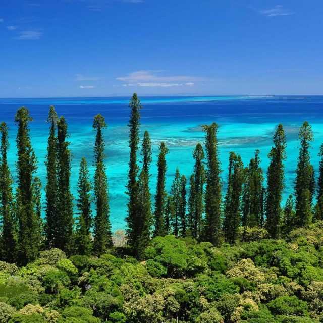A Taste of New Caledonia