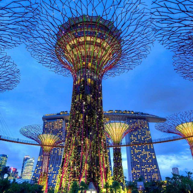 Singapore Explorer