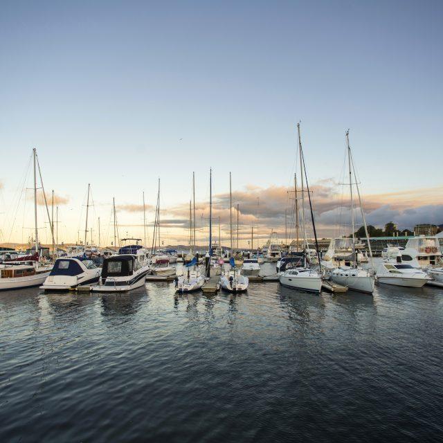 Food, Wine & Yacht Race