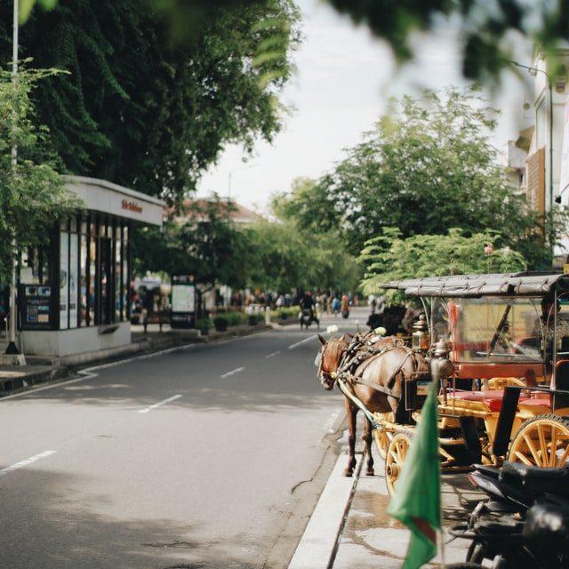 Highlights of Bali & Java